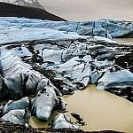 Svínafellsjökull  Foto: Rudi Scharf