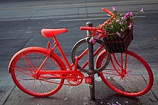 201165-pink-bike