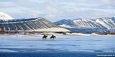 blz 64-65 Fauna paard winter shutterstock_204935161